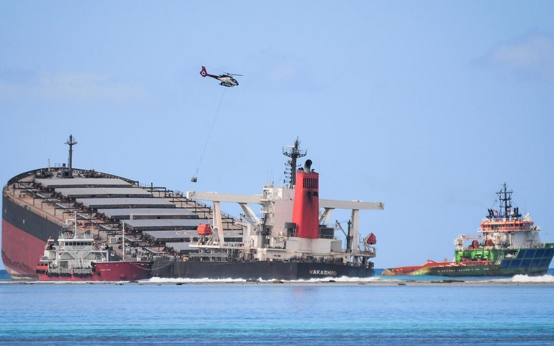 Annual Checks Had Been Cleared By Cargo Ship Responsible For The Mauritius Oil Spill