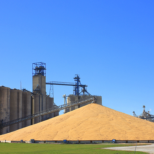 U.S. sells record amount of corn to China as tensions rise