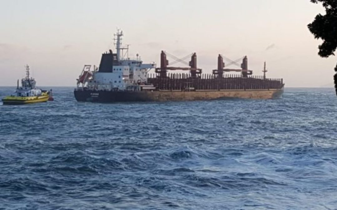 Log Carrier Loses Power After Leaving Port Tauranga, Master And Chief Engineer Found Guilty