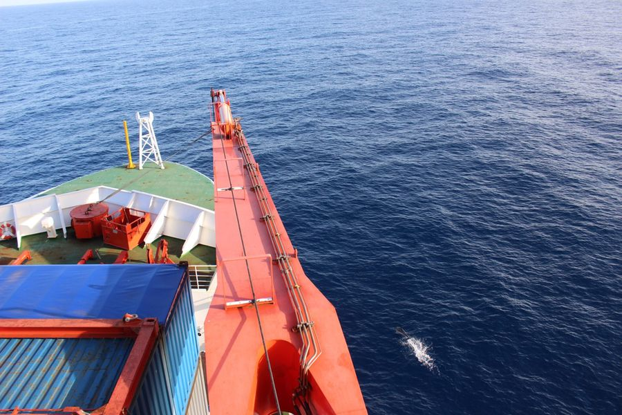 Plocan Tackles Underwater Noise From Shipping