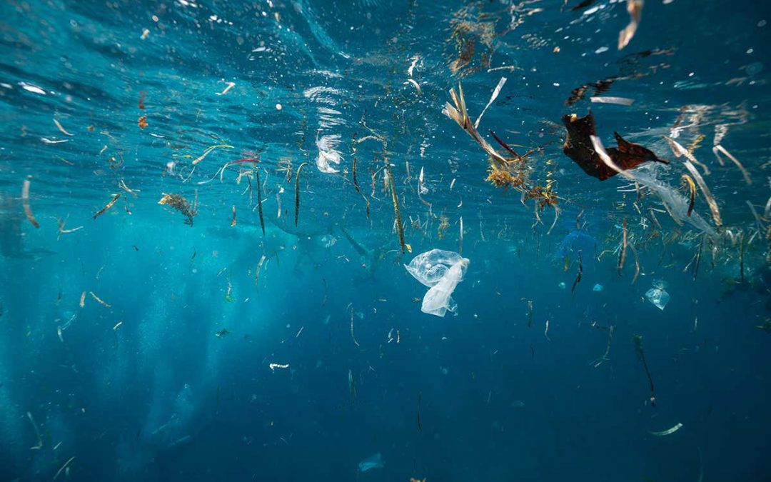 NYK Collects Samples For World's First Large Survey Of Microplastics