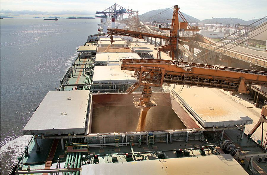 Brazilian Soy Exports In March Should Reach 15 Million Tons: 250 Ships Waiting To Load