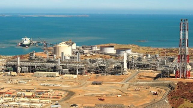 Woodside To Lead Study Of Ammonia Supply Chain For Japan